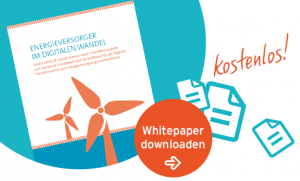 Whitepaper Energieversorger: Inputmanagement auf Basis von KI